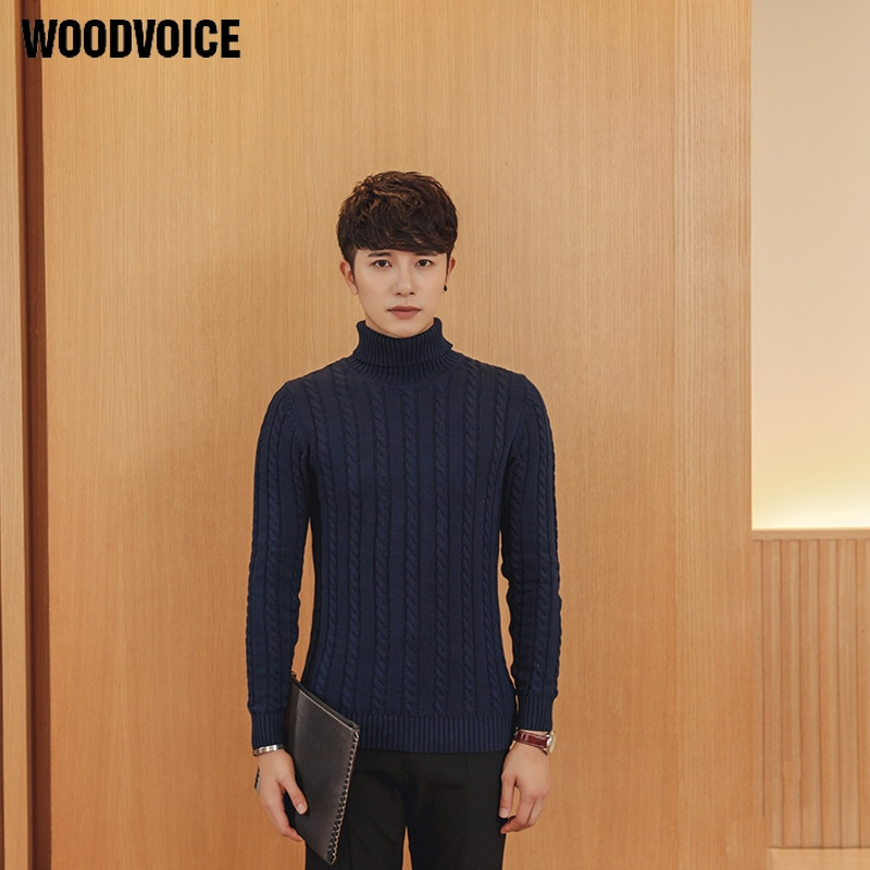 Woodvoice 2017 Brand Clothing Men's Sweaters and Pullovers Turtleneck Sweater Male Outerwear Knitted Turtleneck Basic Style S018